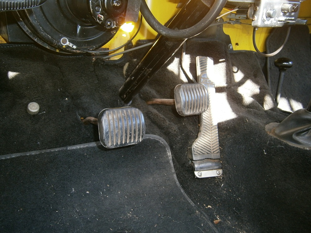 25 pedals.JPG
